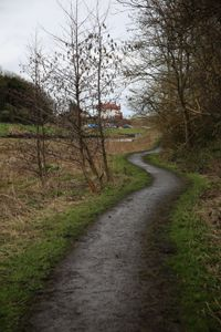 THE PATH TO THE HOUSE.