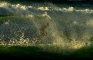 Shadow Surfer
