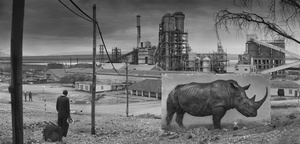 FACTORY WITH RHINO, 2014