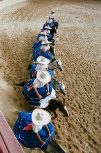 Escaramuza dancing horses.