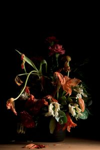 Beauty and Decay N 9 © Kathryn Jago