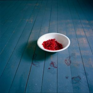 Bowl of Cherries. Rockport, Maine, 2007. © Cig Harvey.