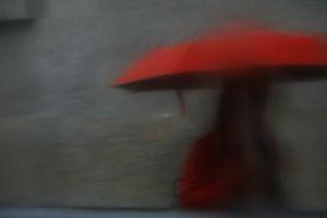 Umbrellas #0966
