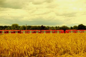 The train in the cornfield