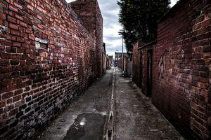The red brick maze