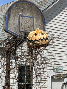Neglected Basket