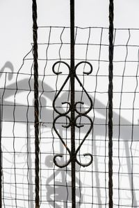 Untitled (Bedstuy Gates), 2016