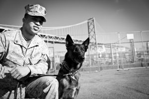 Marine Search and Rescue Dog with Handler, San Francisco CA, October 2012