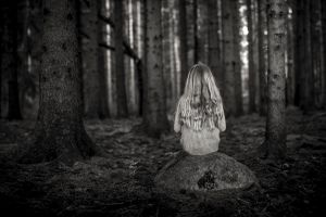 Silence in the woods