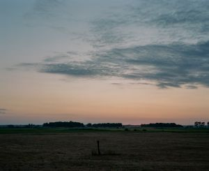 Meadows along the Narew River. Podlasie, Poland