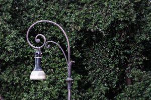 lamppost_19