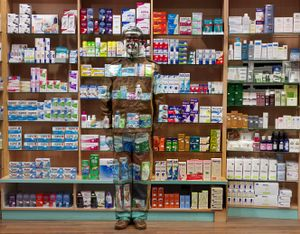 Pharmacy, 2013. Showing at Galerie Paris-Beijing. Courtesy Art Paris Art Fair.