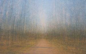 Path 9, 2011