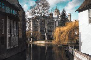 Pictures of Cambridge #4