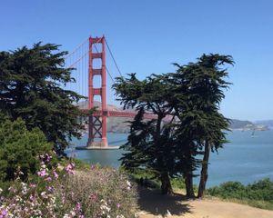 San Francisco by sea