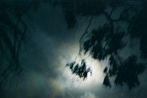 Dark Skies #12