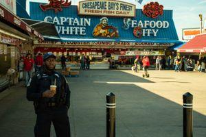 Fish Market Police
