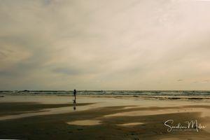 Ocean life7