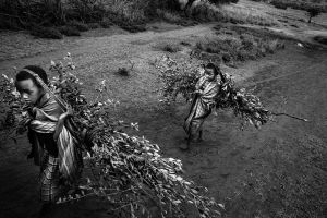 Branches for the circumcision are brought from the forest near by. © Meeri Koutaniemi