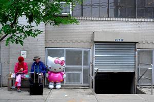 Couple with Kitty - Williamsburg, Brooklyn