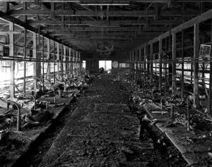 """An abandoned farm inside the 20km exclusion zone from the Fukushima Daiichi nuclear reactor. Dead cows are still lying in the farm. This place was visited by the photographer in April 2011 and it has been left unchanged since. From the series """"Fragments/Fukushima"""" © Kosuke Okahara"""