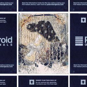 N°108 : It's No longer Polaroid but toadstool