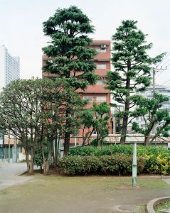 #46 Mukojima, 2004