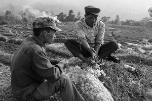 Men on a Field