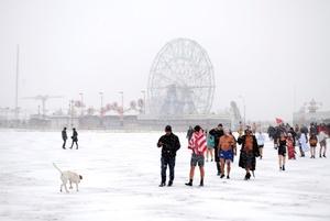 White out: season of the ghost- polar bear walk