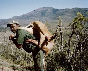 tracker with impala, eastern cape, south africa-from the series 'hunters'-David Chancellor