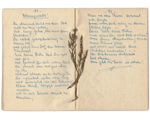 Poem by Elisabeth Pietsch dedicated to the Neringa's (Curonian Spit) forests