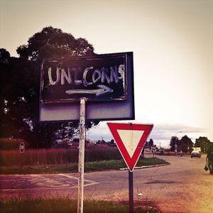 Unicorns © Dean Hutton
