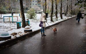 Dog Walk, Russia