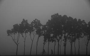 Men in the Mist