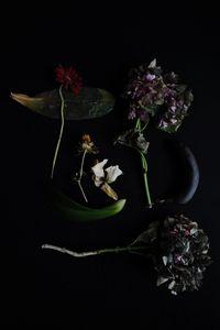 Flowery 9