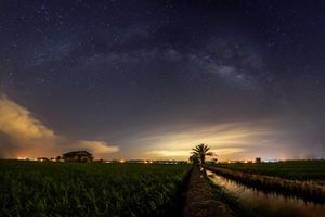 Milky way on top of the paddy field