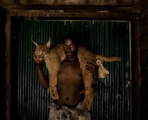 xhosa huntsman with lynx # I, south africa-from the series 'hunters'-David Chancellor