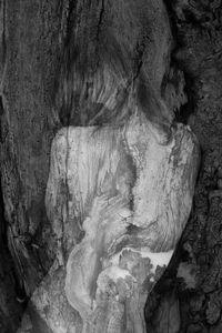 Arbor Essence II