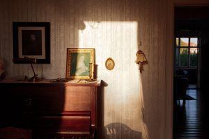 Evening Sun (Rembrandt), 2011