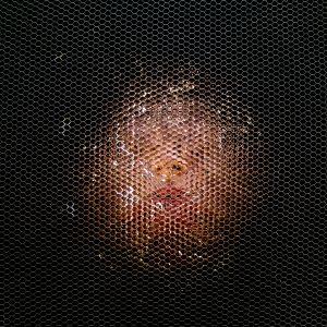 H au nid d'abeille