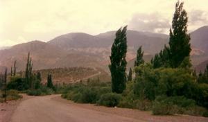 Magicos caminos del norte argentino