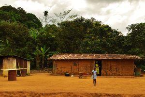 children somewhere inside Gabonese country