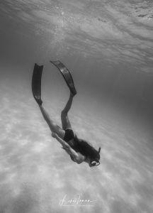 Girl Freediving