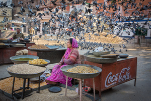 Bird Lady, Jaipur, India
