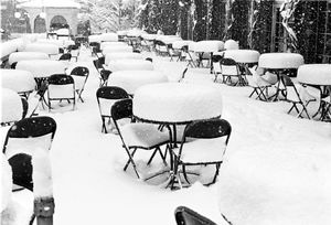 Snow on Tables