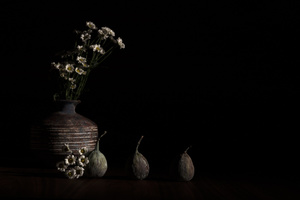 Still Life with Vase and Figs