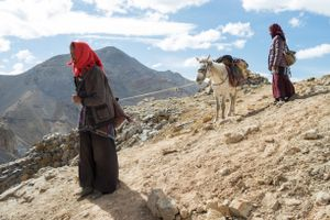 Some travel by foot through the mountains, pulling their horses along on steep passages. Upper Dolpo, Nepal, June 2017.