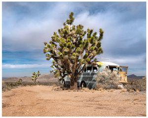 In Those Days, Mojave Desert