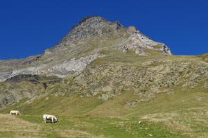 Beneath the ridge