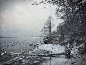 Along Winter's Bay
